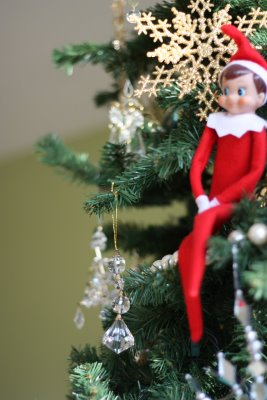 Elf on the Shelf:  Christmas Tradition