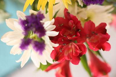 fresh flowers in vase_opt