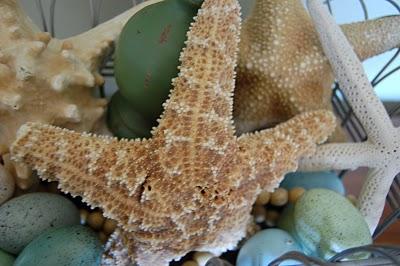 decorating with starfish