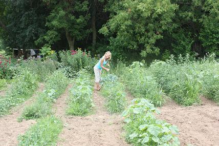 veggie garden master garden