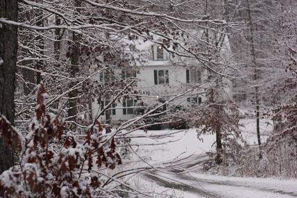 winter scene from house