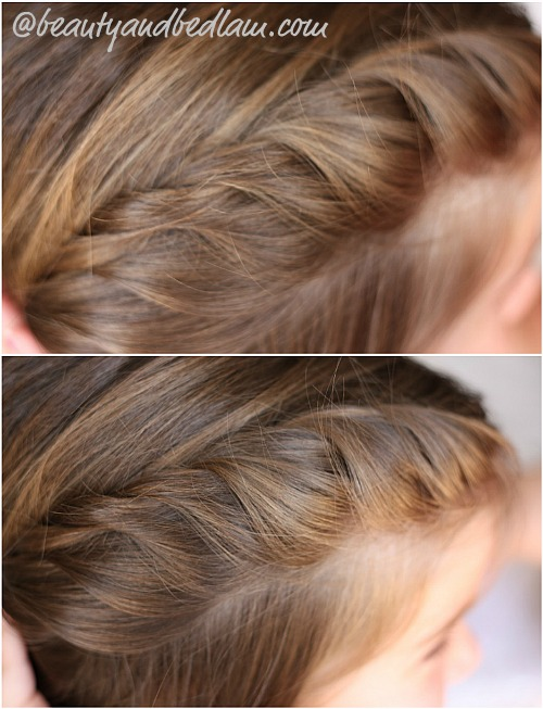 2 strand braid Easy Half Braid (perfect for long or shorter hair)