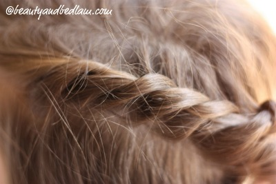 half up braid Easy Half Braid (perfect for long or shorter hair)