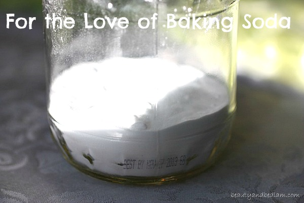 Baking Soda For the Love of Baking Soda