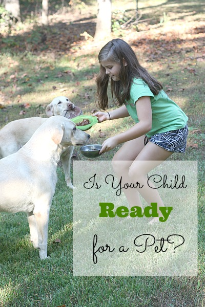 Simple questions to ask - Is Your Child Ready for a Pet