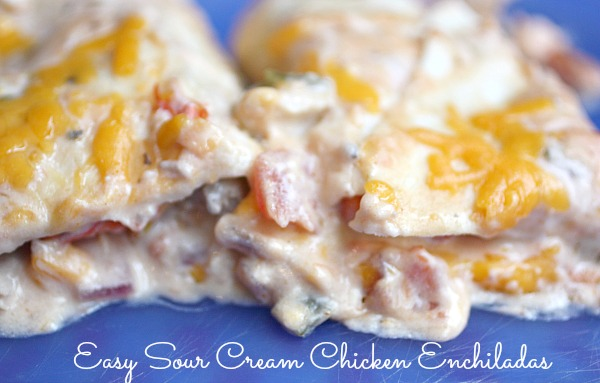 Quick Easy Sour Cream Chicken Enchilada Recipe