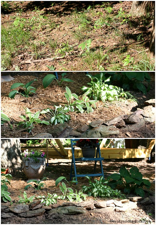 Before and after landscaping. Using what we had and dividing hostas