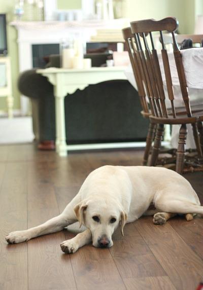 Beautiful Mohawk flooring