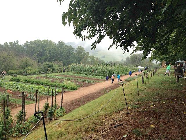 Vegetable Garden at monticello