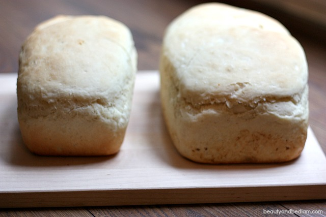 Delicious Sour Cream Bread