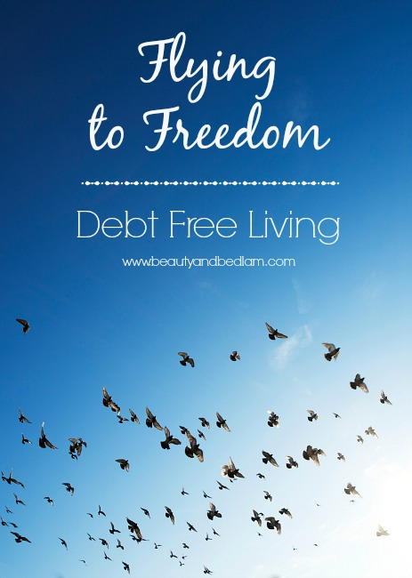 Debt Free Living Flying to Freedom